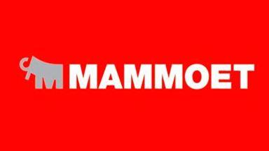 Изображение для производителя MAMMOET