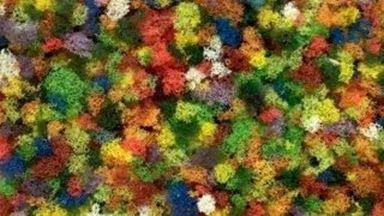Изображение для категории Фолиаж, мох, пена